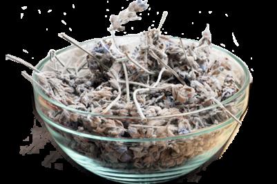 arregosto-materiales_hierbas-antisepticas